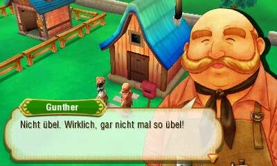 Story of Seasons Hausbau