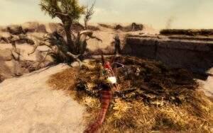Guild Wars 2: Path of Fire Erwärmtes Küstengreifen-Ei