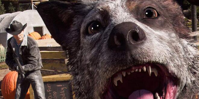Far Cry 5 Fotomodus