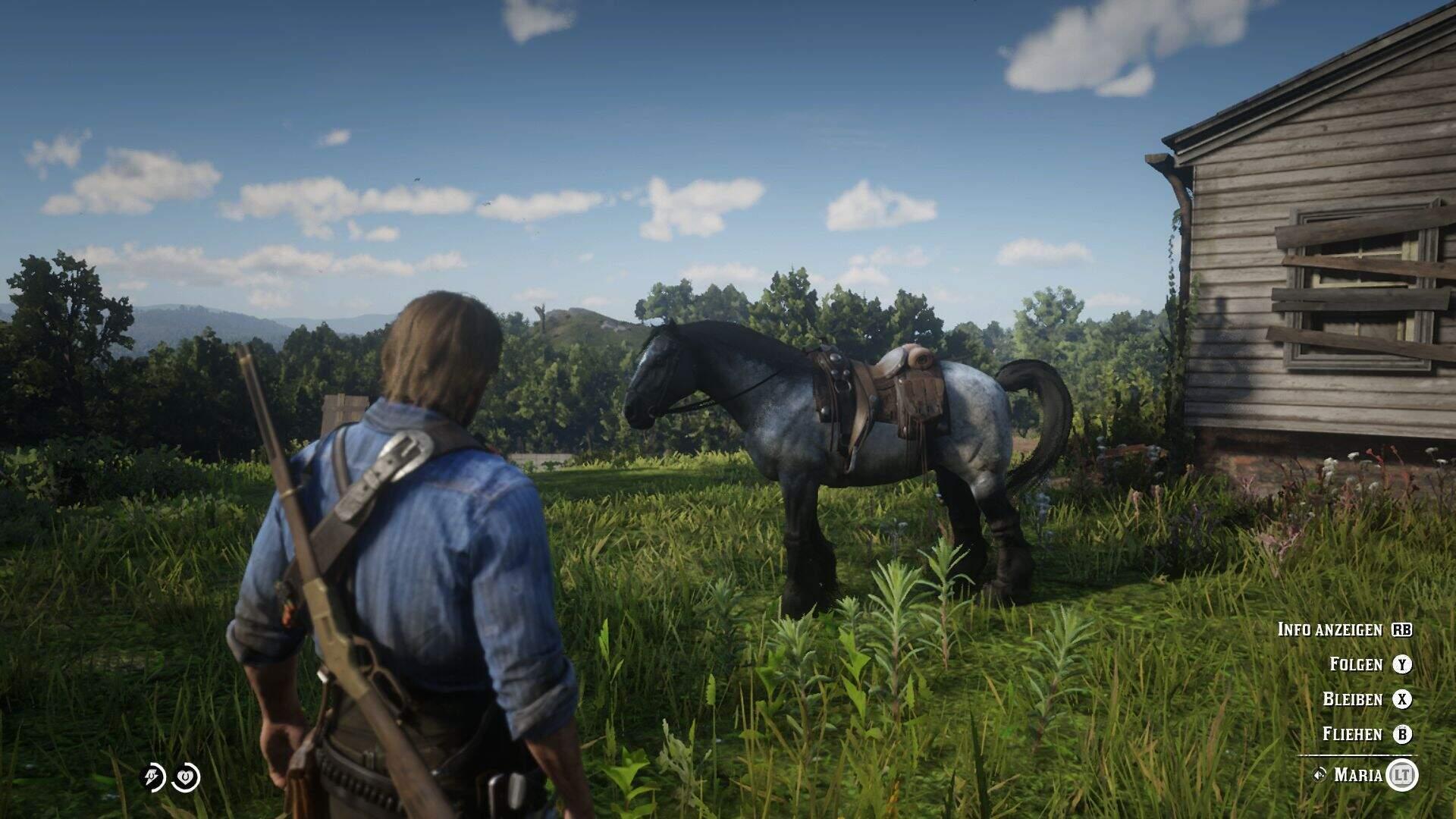 Red Dead Redemption 2 Pferd Befehle