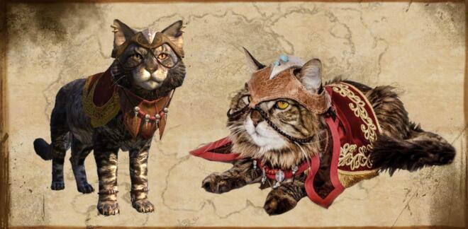 Elder Scrolls Online Cat Cosplay