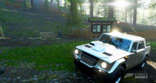 Forza Horizon 4 Wald