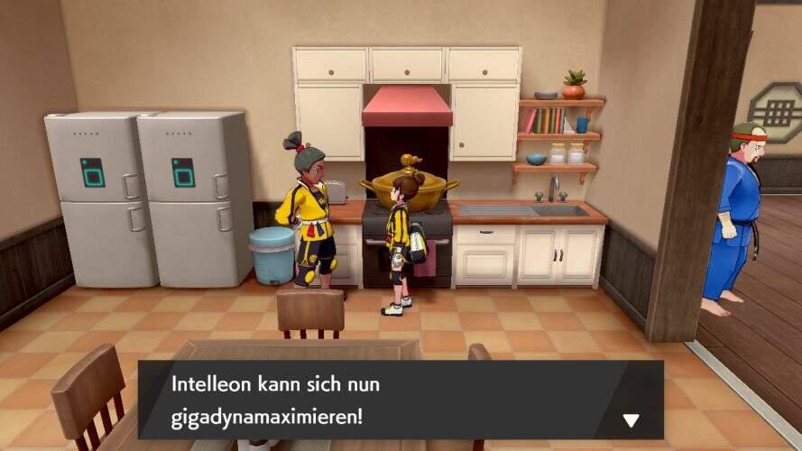pokemon_schwert_schild_dyna_suppe_kochen
