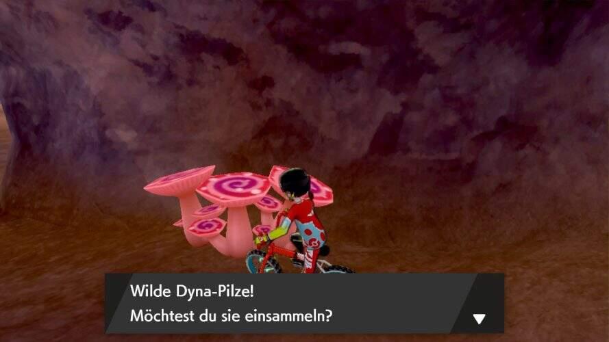 pokemon_schwert_und_schild_ruestungsinsel_dyna_pilze